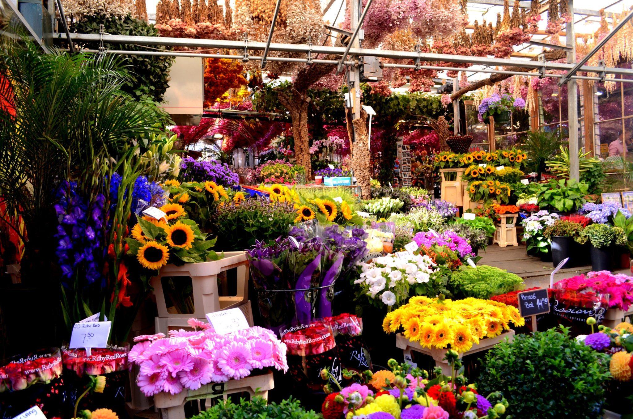 Цветочная магазин со студией фото и видео-съемки