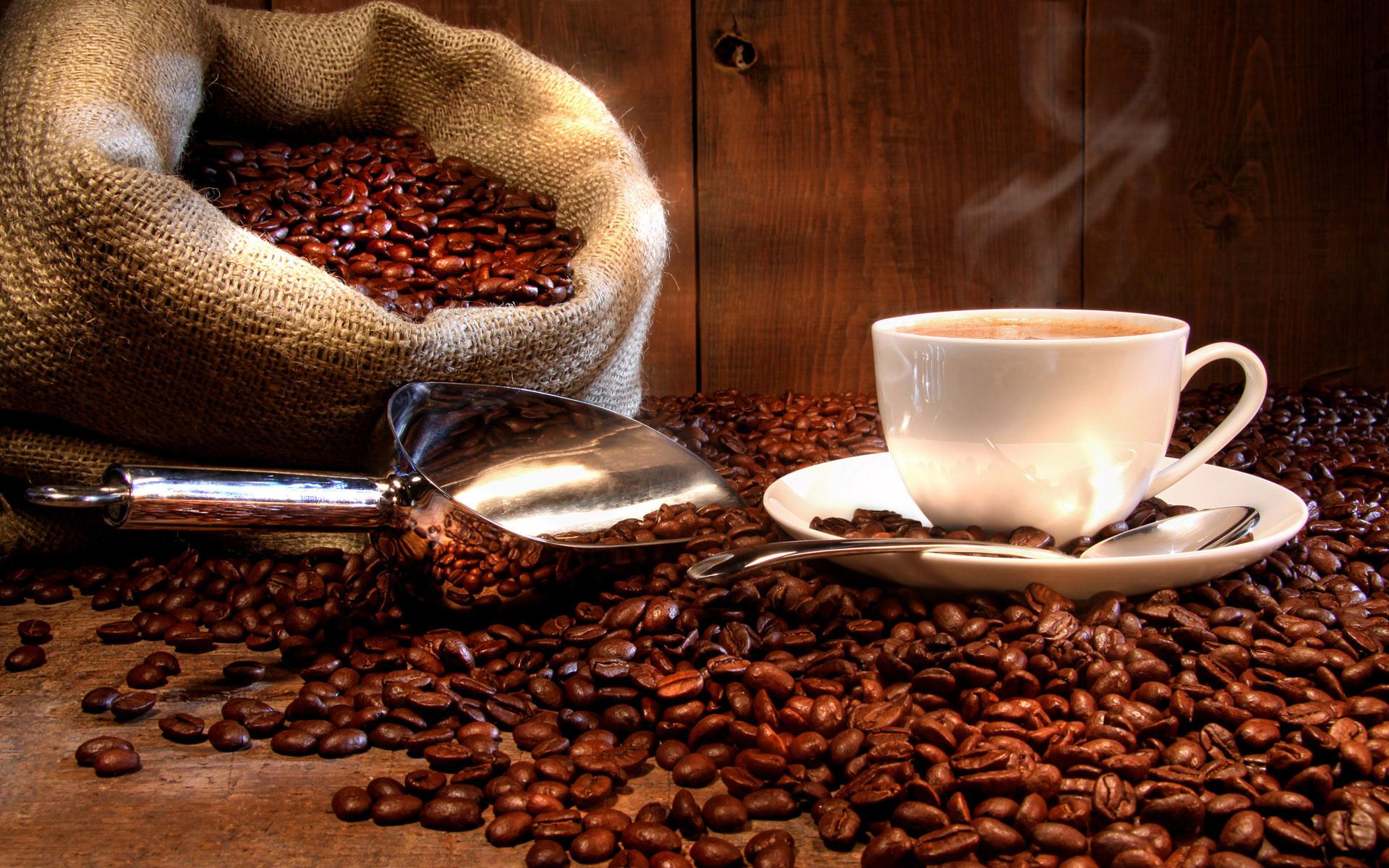 """Кофейня формата """"кофе с собой"""".  Чистая прибыль"""