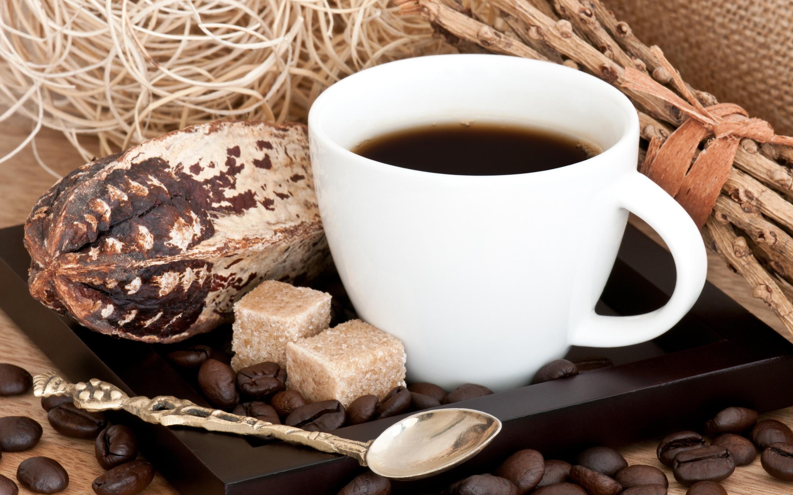 Кофейня кофе с собой. В известном ТК. Центр города