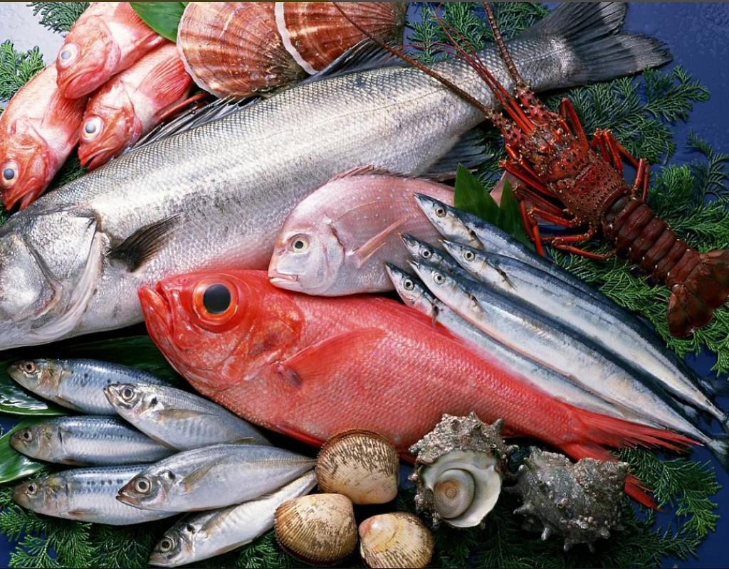 Магазин свежей рыбы от производителя с франшизой