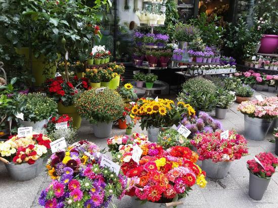 Цветочный магазин на пионерской